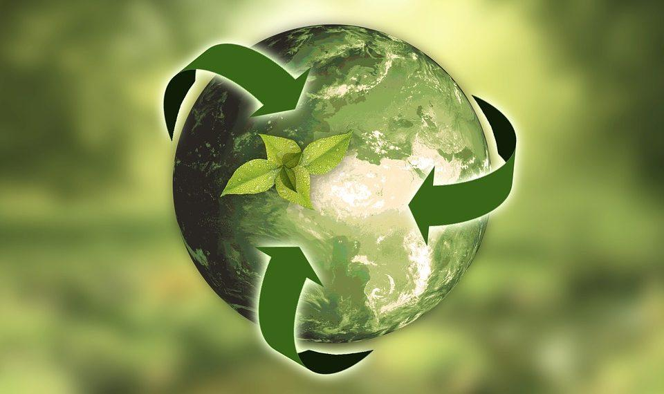 Features and Benefits of Degradable Bags